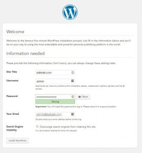WordPress install Welcome Screen